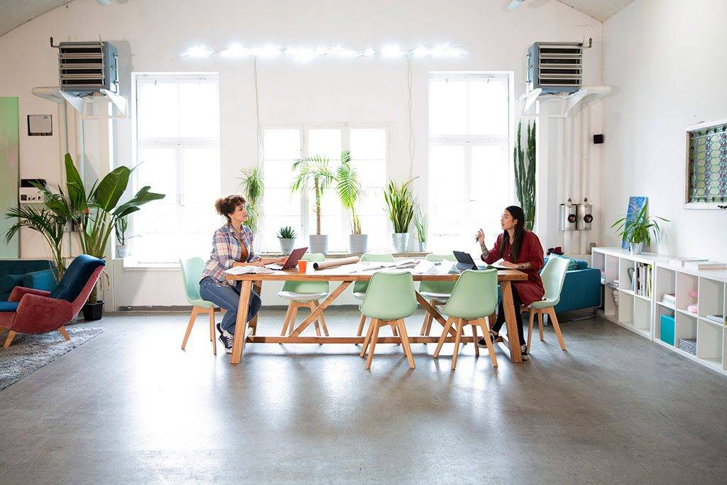 Two women working at table in modern office - FKF03363