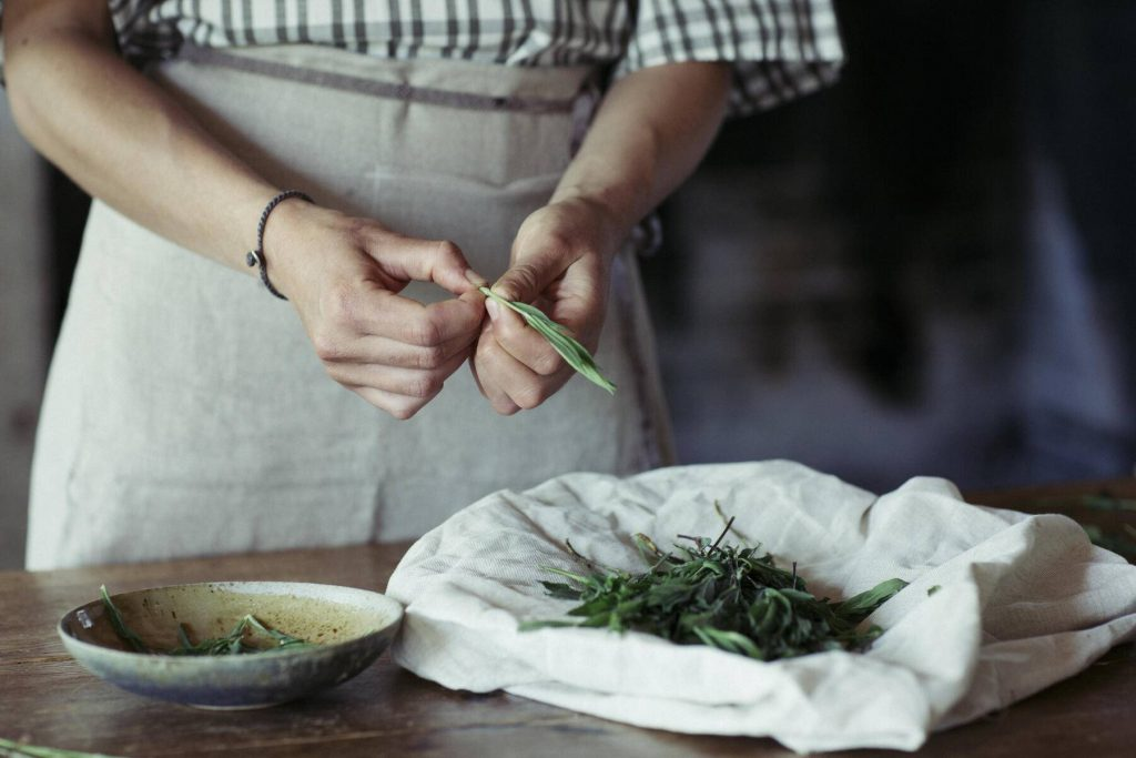 Young woman cleaning fresh tarragon - ALBF00441