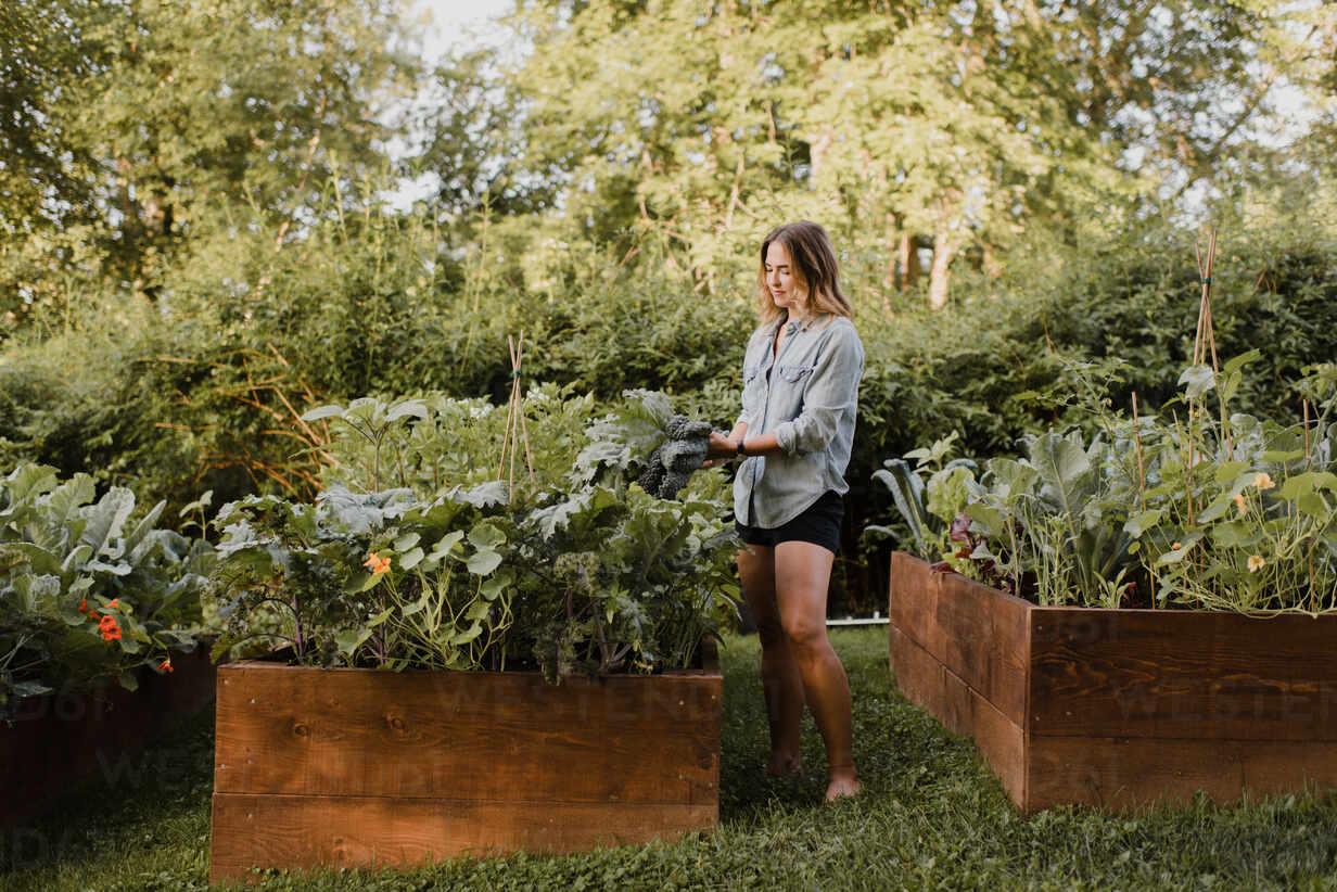 https://www.westend61.de/images/0001304540pw/woman-working-in-her-garden-CUF54283.jpg