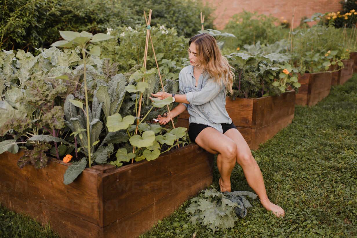 https://www.westend61.de/images/0001304541pw/woman-working-in-her-garden-CUF54284.jpg