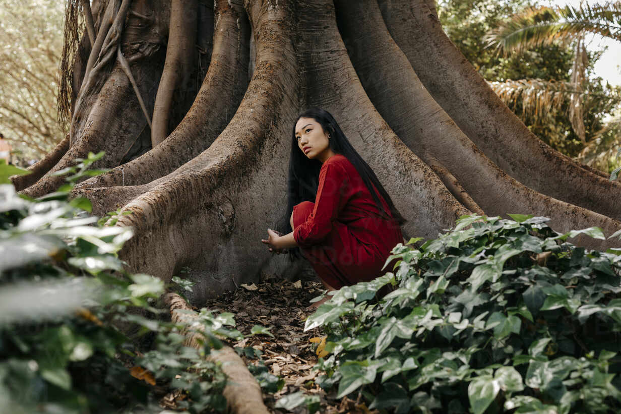 Beautiful young woman wearing a red dress crouching at a tree with large  roots – Stockphoto