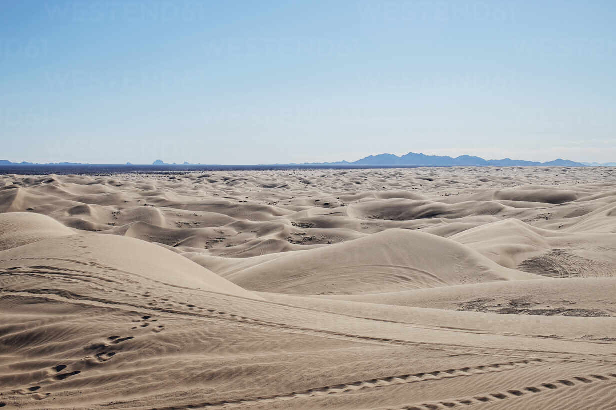Imperial Sand Dunes, California stretch to the horizon. stock photo